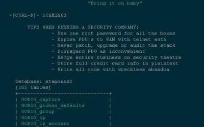 Hackers Target Anti-DDoS Firm Staminus